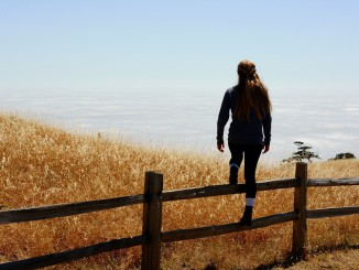 Girl Jumping Fence